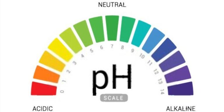 Understanding Soil Acidity